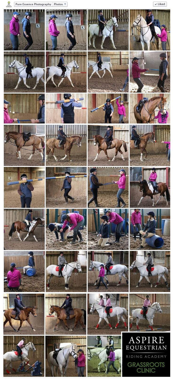 Aspire Grassroots Clinic at Lindrick Livery, North Yorkshire; 15-16 March 2014 - Photo Report by Pure Essence Photography