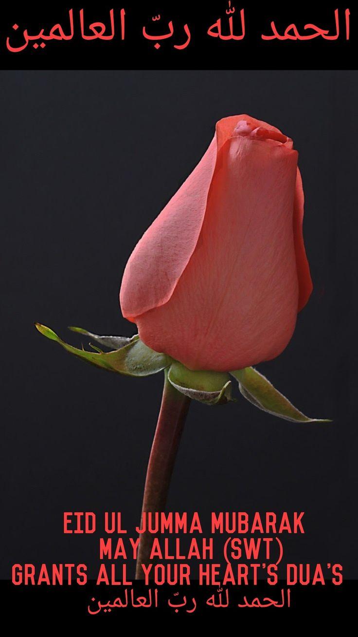 221 best jummah mubarak images on pinterest allah billionaire allah beautiful flowers islamic pretty flowers kristyandbryce Choice Image