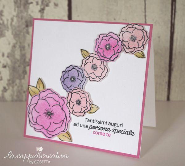 Rose di Cosetta