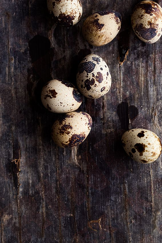"""Quail Eggs. I used to buy these on Easter and dye them for my little girl. She loved the speckled """"baby"""" eggs!"""
