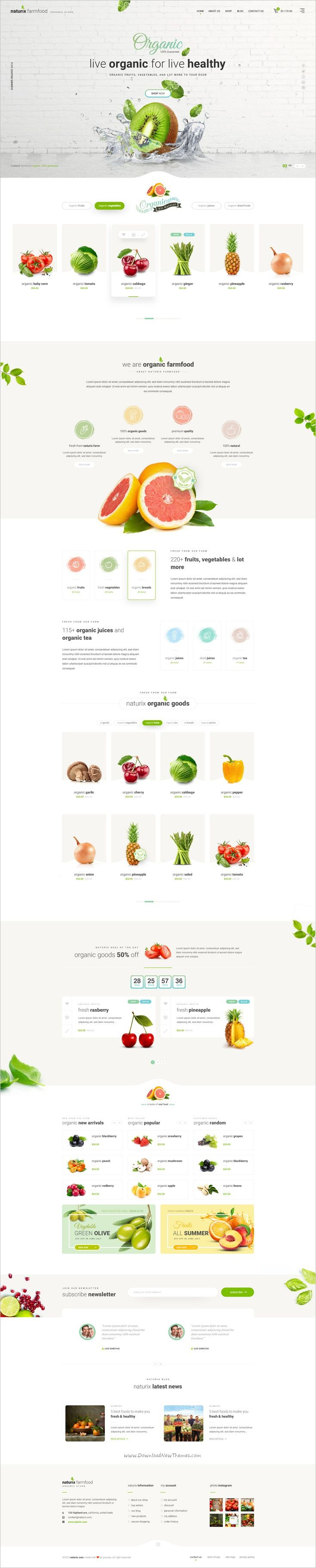 Naturix is a modern and elegant design #Photoshop template for #webdev stunning #organic store eCommerce websites download now➩ https://themeforest.net/item/naturix-organic-store-psd-template/19184061?ref=Datasata