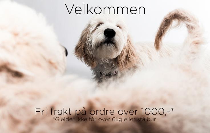 Alpha Dog - Hundeutstyr håndplukket for deg. Kvalitet, miljø og design. Hundeklær - hundesenger - kornfritt fôr