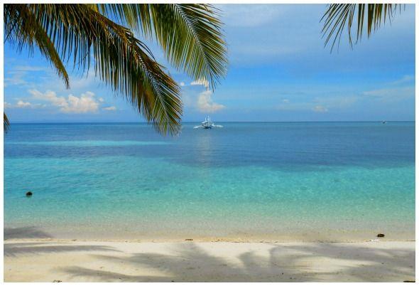 Blue Corals Beach Resort on Malapascua Island