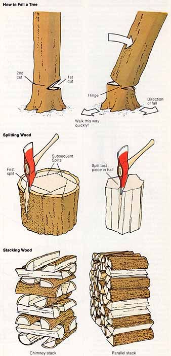 How to fell a tree and split the logs.                                                                                                                                                                                 More