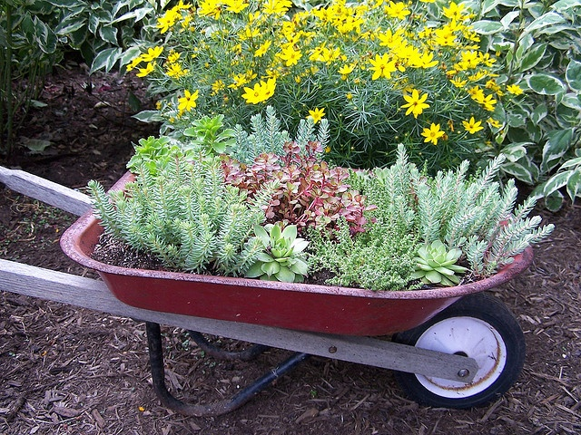 25 best ideas about wheelbarrow decor on pinterest wheelbarrow garden wheelbarrow planter for Decoration jardin velo