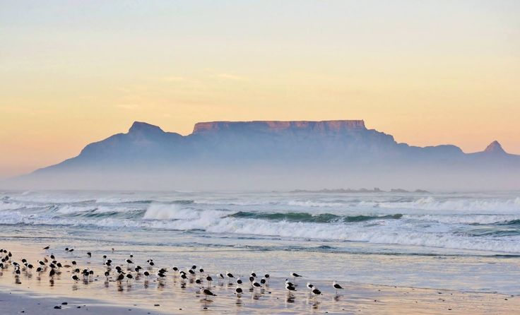 Volunteer with Via Volunteers and experience South Africa first hand. Table mountain