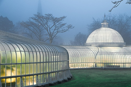 Kibble Palace is the jewel of the Botanic Gardens in Glasgow.