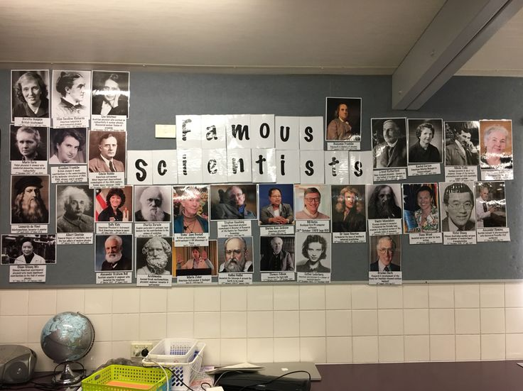 Famous scientist display in year 4