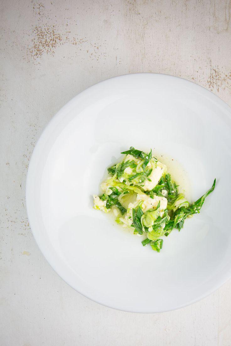Weißlacker mit Zwiebel-Vinaigrette
