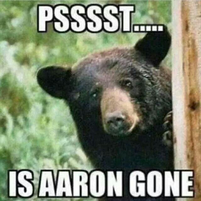 Fraidy bear