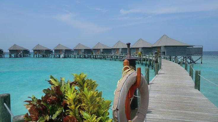 Reisebüro der VR-Bank Erlangen-Höchstadt-Herzogenaurach eG - Reisebericht: Malediven - Inselparadies im Indischen Ozean