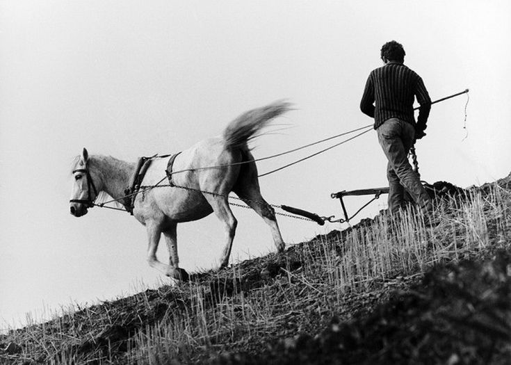 Όργωμα. Ήπειρος, 1978