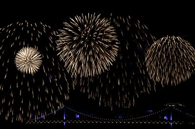 Fireworks Animation  #fireworks #4thofjuly