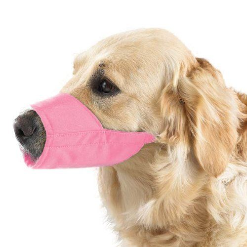 Lined Fashion Dog Muzzle (12 Pack) >>> See this great image  : Dog muzzle