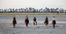 Horseback Safaris with Ride Botswana and David Foot