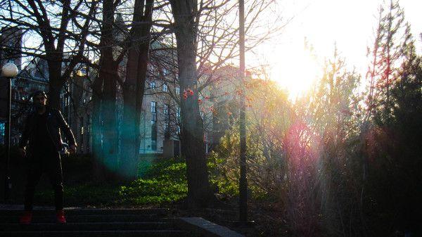 sun makes everything better : http://babesngents.com/blogs/news/30038913-bts-scheming-video-editorial-for-zargara // #zargara  #babesngents