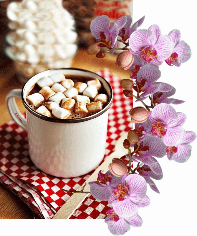 Imagini pentru gifuri cafea