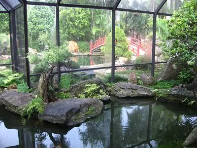 Fake pond inside a greenhouse my future pinterest for Koi pond pool