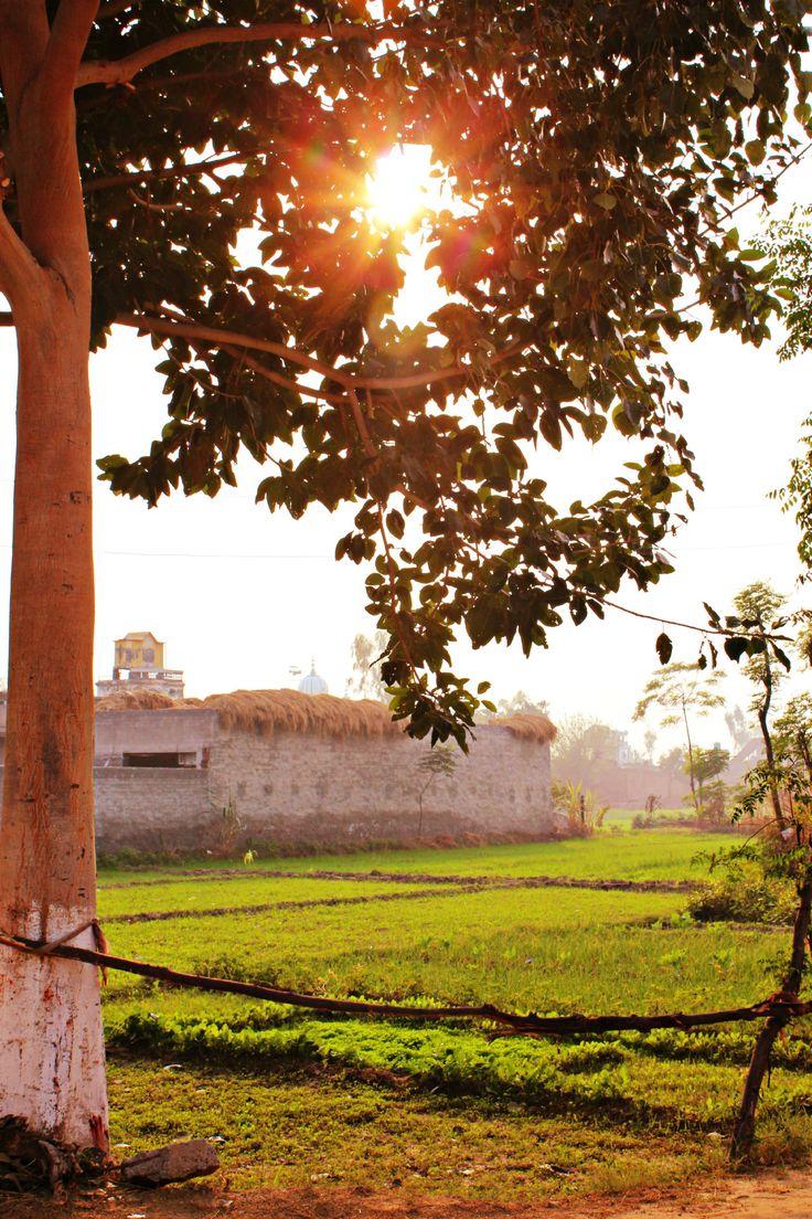 Punjaban : Photo
