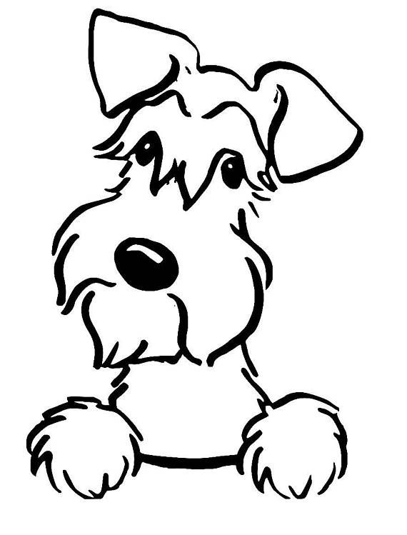 Miniature Schnauzer Coloring Pages