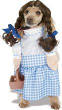 Dorothy Costume - Comes in all sizes - 3 Day Shipping