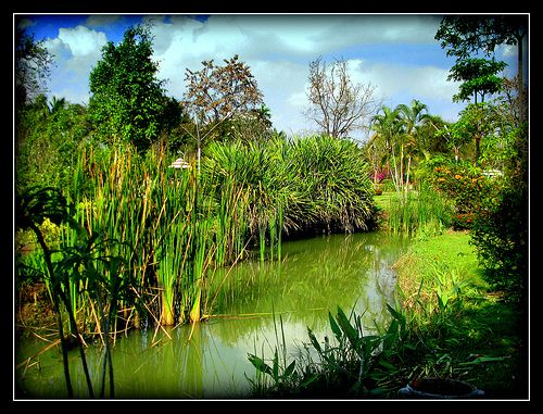 nice Issan part of Thailand.View large please!