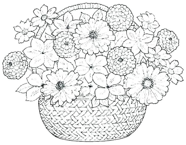 pics of coloring pages flowers - photo#34