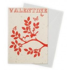 Fairy Wrens Valentine's Day card by Earth Greetings. Embedded with lemon-scented bottlebrush seeds!