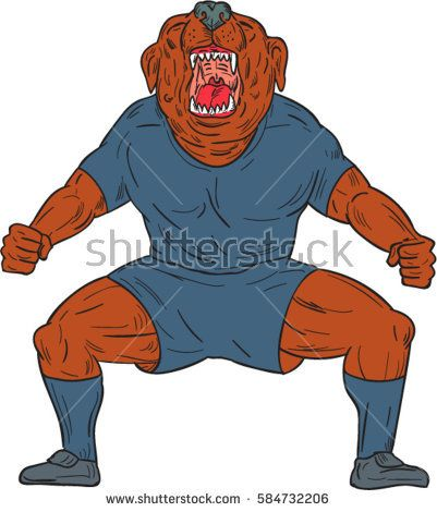 Illustration of a bulldog footballer with knees bent and mouth wide open celebrating haka victory goal viewed from front set on isolated white background done in cartoon style.   #football #drawing #illustration