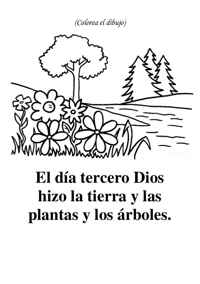 Colorea El Dibujo El Día Tercero Dios Hizo La Tierra Y Lasplantas Y