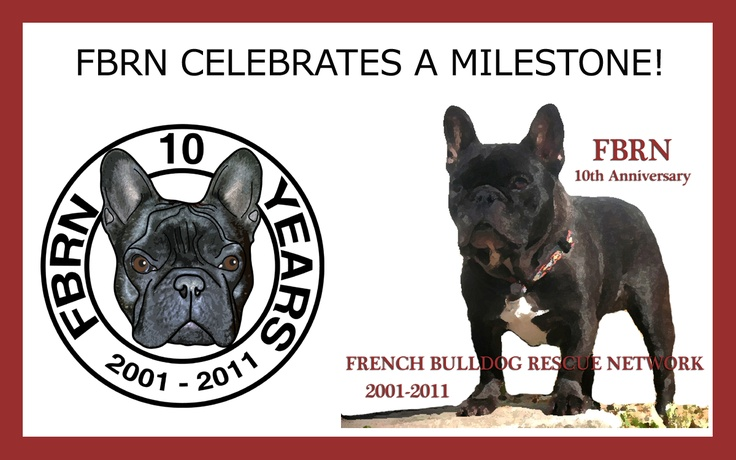 Support the French Bulldog Rescue Network!