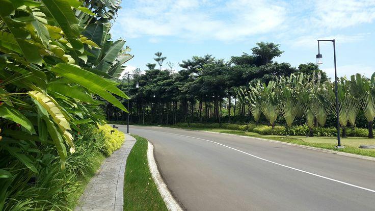 Main Entrance Vimala Hills