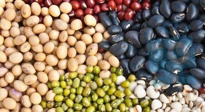 Beans provide fiber