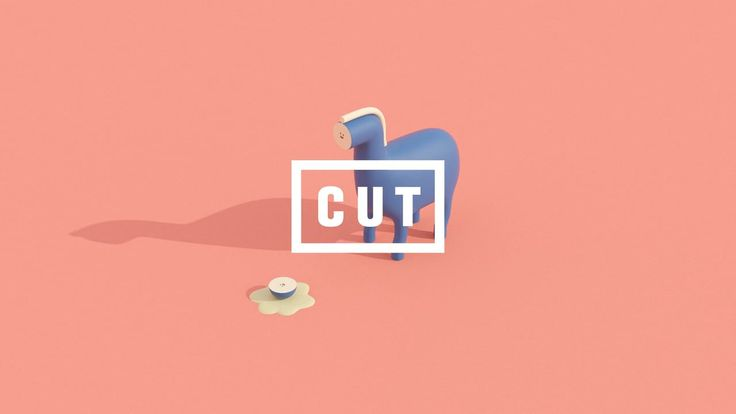 CUT | The cut made ​​friends.