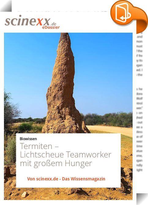 Termiten    ::  Termiten gelten als intelligente Baumeister, als effektive Teamworker und vor allem als gefährliche Holzfresser, die ganze Häuser ohne Vorwarnung zum Einsturz bringen können. Dieses Image ist zwar ungeheuer populär, aber längst nicht immer berechtigt – zumindest was ihre Schädlichkeit betrifft.   Denn die meisten Termiten ernähren sich keineswegs nur von Holz, sondern bevorzugen Gras, Humus oder sogar Tierdung. Manche von ihnen züchten aber auch in unterirdischen Gärten...