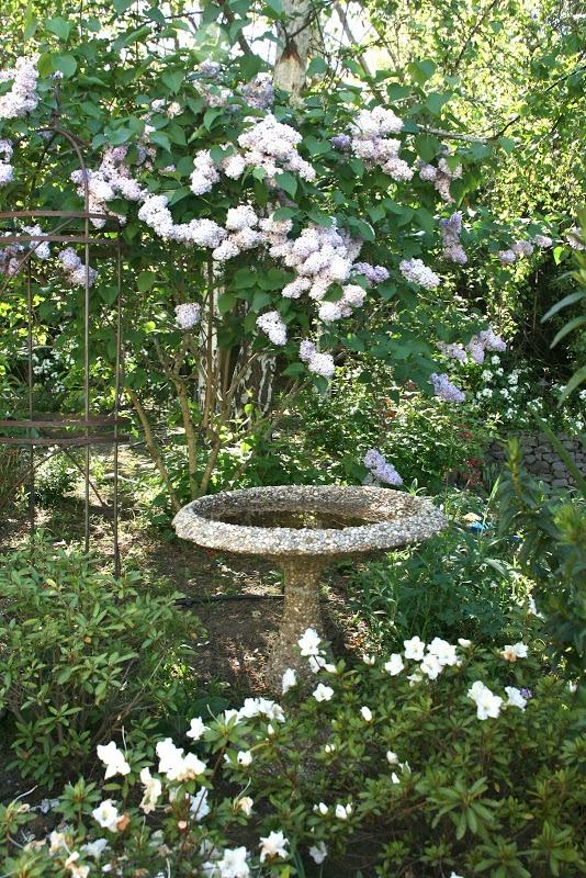 vignette design: Garden Notes