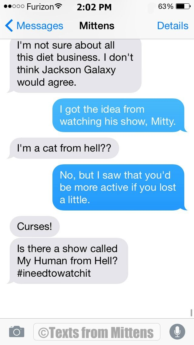 NEW Daily #textsfrommittens : The Cat from Hell Edition textsfrommittens.com