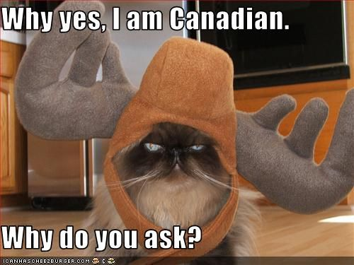 http://images.cryhavok.org/d/12645-1/LOLcat+-+Canadian.jpg
