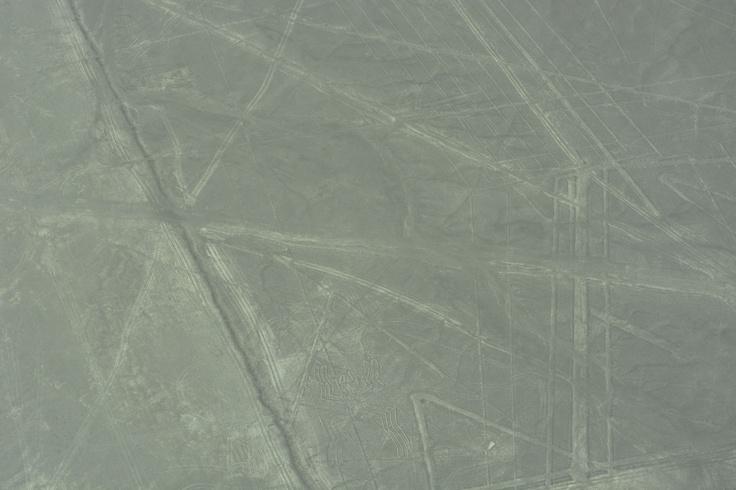 航空機からのナスカの地上絵(クモ)。