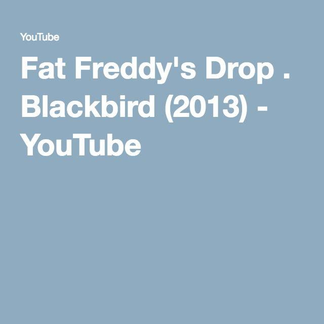 Fat Freddy's Drop . Blackbird (2013) - YouTube