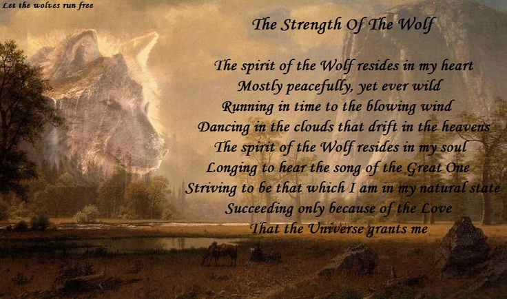 Wolf Quotes About Strength: The Strength Of The Wolf ♥