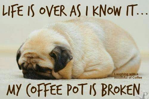 Coffee Maker Broke Meme : Coffee, Pots and Life on Pinterest