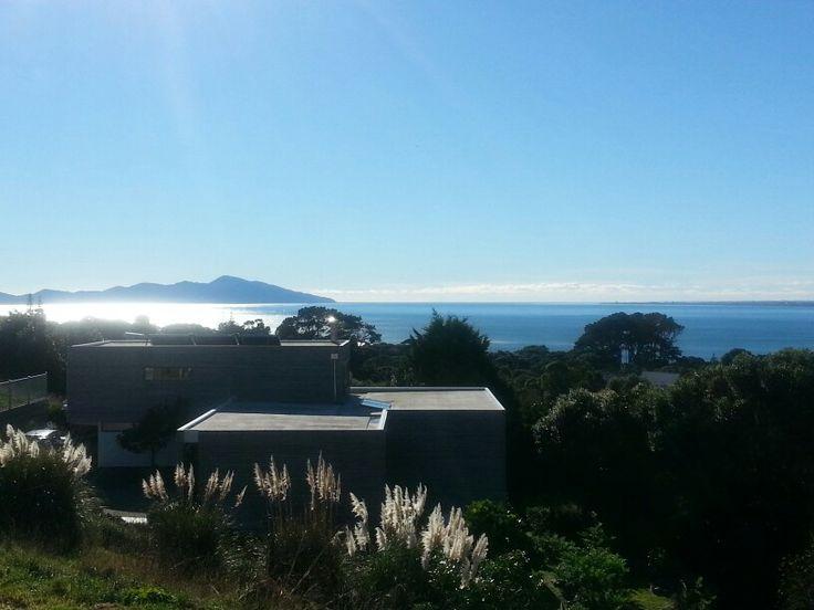 Queen's Birthday Pukerua Bay