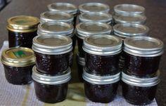 Saskatoon Jam –no pectin. Made August 2014. Freezer jam worked well, canned ver…