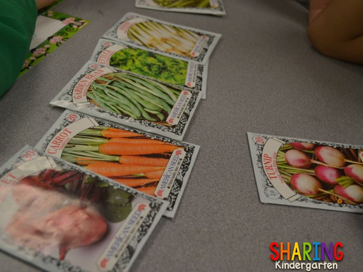 Love to Learn about Plants. - Sharing Kindergarten