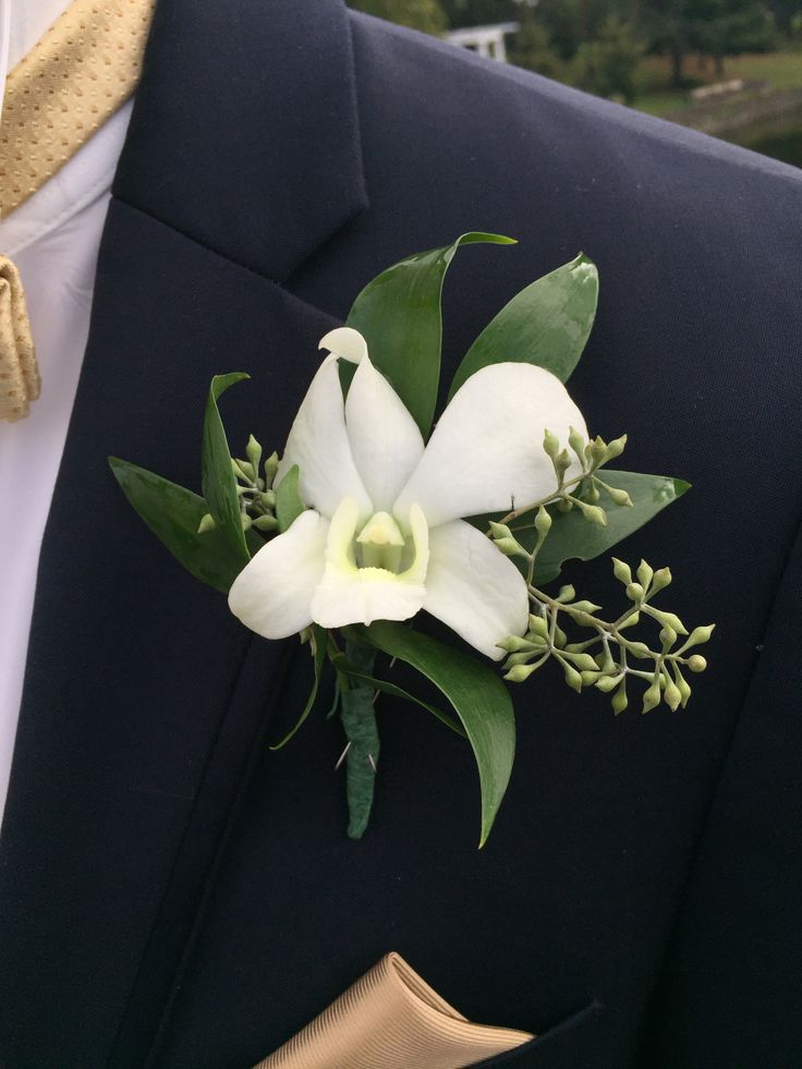 Groom S Boutonniere Dendrobium Orchid With Seeded Eucalyptus Dendrobium Orchids Orchids
