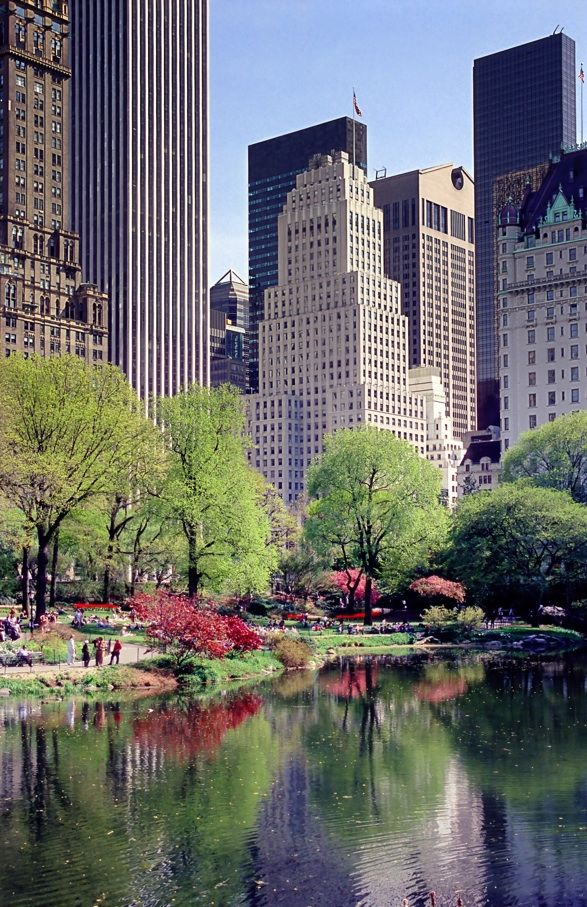 New York City Summer in Central Park.  Who doesn't love New York.  BEEN THERE many times and used to live on Long Island.  I have been all over the world and NYC is still my favorite city.
