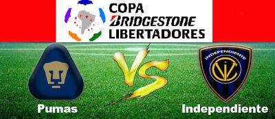 Blog de palma2mex : Pumas vs Independiente del Valle – Copa Libertador...