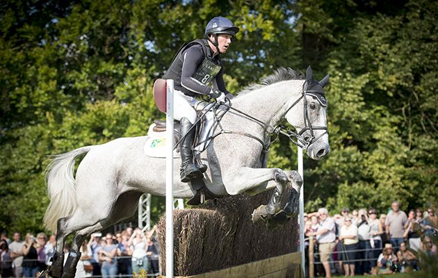 7 things you need to know about Oliver Townend's latest Burghley star http://trib.al/OL8aOF5