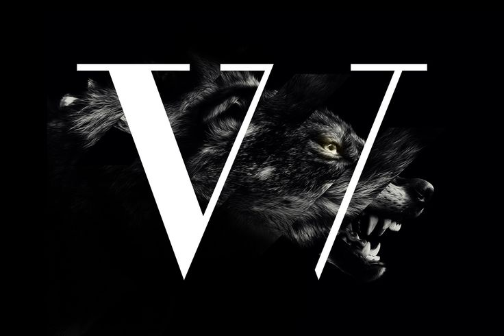 Predators are our totems. We catch the magnetic moment of hunting to picture wilderness in the pure sense. Through a dark palette the reflection of the instinct takes form, only broken with the bold impact of typographical characters. Hunter or beast of prey?